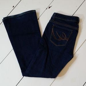 Express X2 Denim Flare Jeans